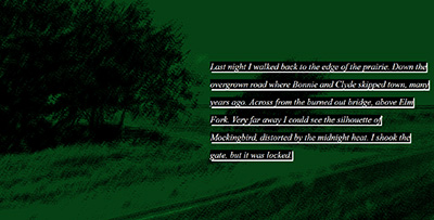 Image of text on an abstracted green background